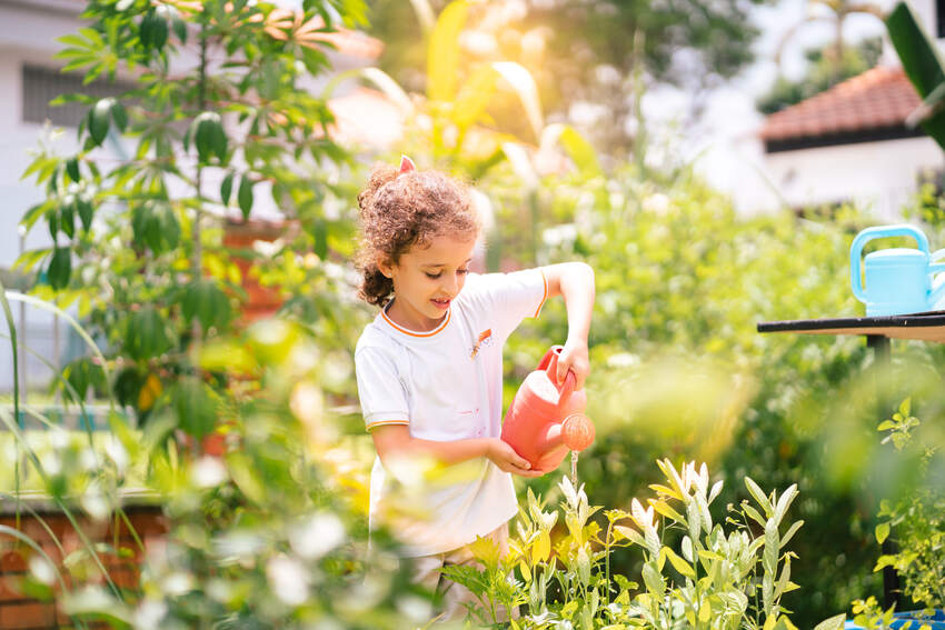 Students are encouraged to play an active role in co-managing the eco-garden with over a 100 varieties of plants, vegetables and flowers.